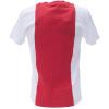 T-shirt Ajax AFC Logo katoen bedrukken achterkant